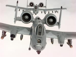 Two U.S. Air Force A-10A Warthogs in Flight by Stocktrek Images