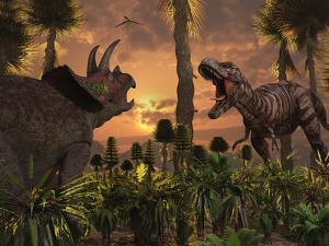 Tyrannosaurus Rex and Triceratops Meet for a Battle to the Death by Stocktrek Images