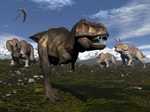 Tyrannosaurus Rex Attacked by Three Triceratops by Stocktrek Images