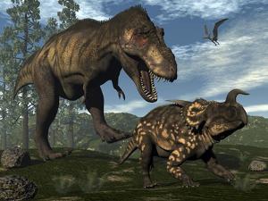 Tyrannosaurus Rex Attacking an Einiosaurus Dinosaur by Stocktrek Images