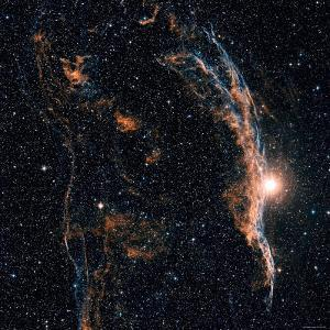 Witches Broom Nebula and Veil Nebula by Stocktrek Images
