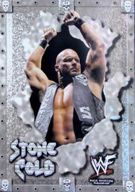 Stone Cold Tin Sign