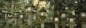 Stone Lanterns, Kasuga Taisha, Nara, Japan