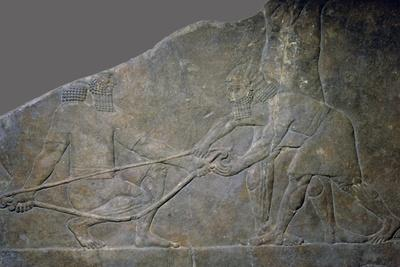 https://imgc.allpostersimages.com/img/posters/stone-panel-from-the-north-palace-of-ashurbanipal-nineveh-northern-iraq-neo-assyrian-c645-bc_u-L-Q1EERU50.jpg?artPerspective=n