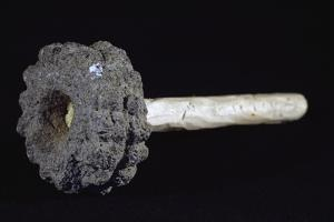 Stone Weapon Used by Indigenous People of Costa Rica