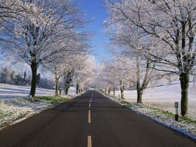 https://imgc.allpostersimages.com/img/posters/straight-empty-road-through-rural-lincolnshire-in-winter-england-united-kingdom-europe_u-L-P7XKB00.jpg?p=0