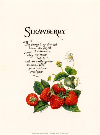 https://imgc.allpostersimages.com/img/posters/strawberry_u-L-E2H4Q0.jpg?p=0