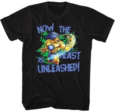 Street Fighter- Beast Unleashed
