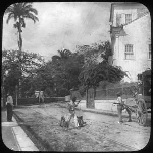 Street Scene, Pernambuco, Brazil, Late 19th or Early 20th Century