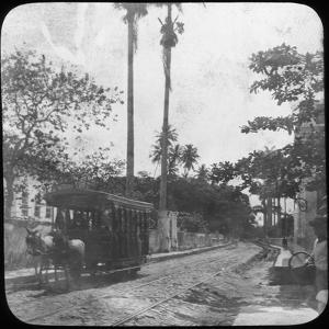 Street Scene with Horse-Drawn Tram, Pernambuco, Brazil, Late 19th or Early 20th Century