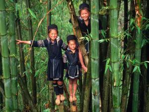 Ethnic Black H'mong of Northern Vietnam, Sapa, Lao Cai, Vietnam by Stu Smucker