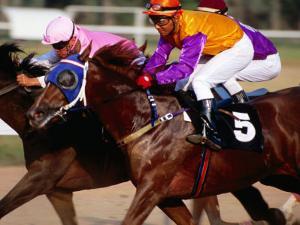 Horse Racing at Saigon Racing Club District 11, Ho Chi Minh City,  Vietnam by Stu Smucker