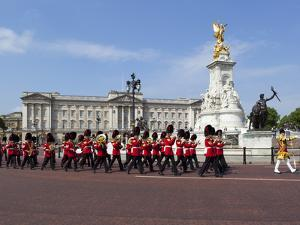 Band of the Coldstream Guards Marching Past Buckingham Palace During the Rehearsal for Trooping the by Stuart Black