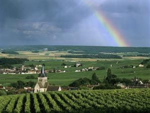 Champagne Vineyards and Rainbow, Ville-Dommange, Near Reims, Champagne, France, Europe by Stuart Black