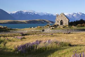 Church of the Good Shepherd, Lake Tekapo, Canterbury Region, South Island, New Zealand, Pacific by Stuart Black