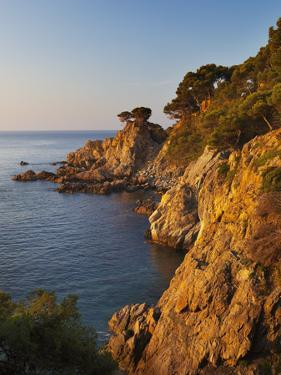 Coastline at Dawn, Calella De Palafrugell, Costa Brava, Catalonia, Spain, Mediterranean, Europe by Stuart Black