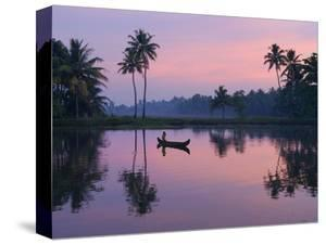 Dawn over the Backwaters, Near Alappuzha (Alleppey), Kerala, India, Asia by Stuart Black