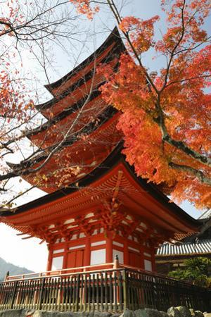 Five-Storey Pagoda (Gojunoto) in Autumn, Miyajima Island, Western Honshu, Japan by Stuart Black