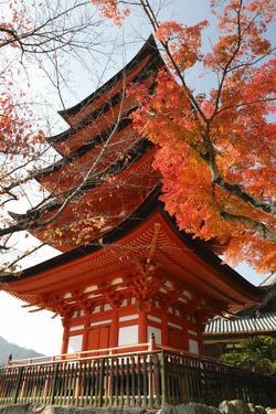 Five-Storey Pagoda (Gojunoto) in Autumn, Miyajima Island, Western Honshu, Japan by Stuart Black