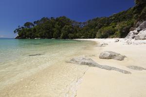 Frenchman's Bay Beach, Abel Tasman National Park, Nelson Region, South Island, New Zealand, Pacific by Stuart Black