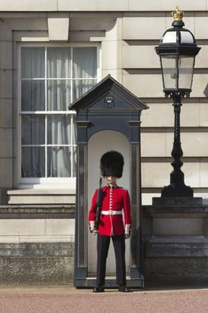 Grenadier Guardsman Outside Buckingham Palace, London, England, United Kingdom, Europe