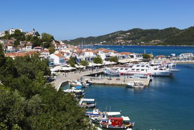 Harbour, Skiathos Town, Skiathos Island, Sporades Islands, Greek Islands, Greece, Europe by Stuart Black