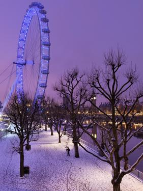 Houses of Parliament and London Eye in Winter, London, England, United Kingdom, Europe by Stuart Black