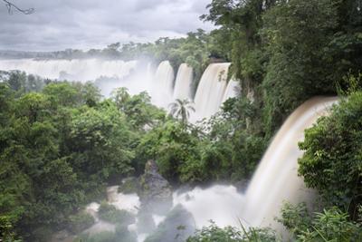 Iguazu Falls, Iguazu National Park, UNESCO World Heritage Site, Misiones Province, The Northeast, A by Stuart Black