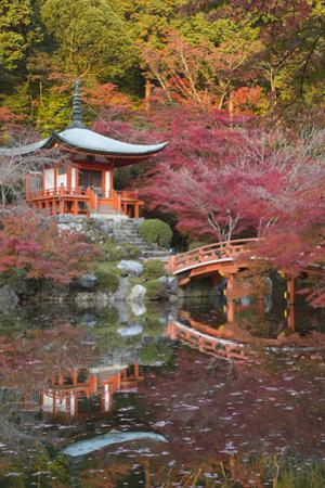 Japanese Temple Garden in Autumn, Daigoji Temple, Kyoto, Japan by Stuart Black
