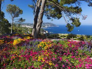 Jardins Botanico De Cap Roig, Calella De Palafrugell, Costa Brava, Catalonia, Spain, Mediterranean, by Stuart Black