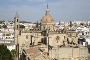 Jerez de la Frontera Cathedral, Jerez de la Frontera, Cadiz province, Andalucia, Spain, Europe by Stuart Black