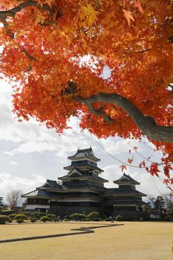 Matsumoto-Jo (Wooden Castle) in Autumn, Matsumoto, Central Honshu, Japan, Asia by Stuart Black
