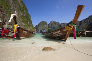 Maya Bay with Long-Tail Boats, Phi Phi Lay Island, Krabi Province, Thailand, Southeast Asia, Asia by Stuart Black