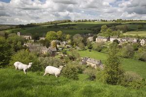 Naunton, Cotswolds, Gloucestershire, England, United Kingdom, Europe by Stuart Black