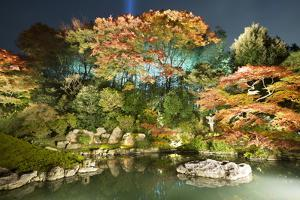 Night Illuminations of Temple Gardens, Shoren-In Temple, Southern Higashiyama, Kyoto, Japan by Stuart Black