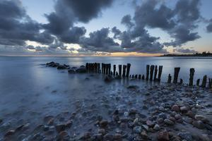 Old wooden piles going out to sea and pebbles on beach at dawn, Munkerup, Kattegat Coast, Zealand,  by Stuart Black