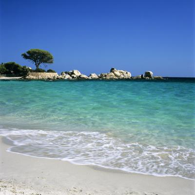 Palombaggia Beach, Near Porto Vecchio, South East Corsica, Corsica, France, Mediterranean, Europe by Stuart Black