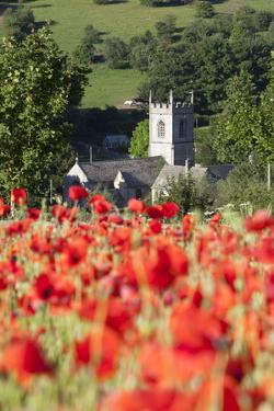 Poppy Field and St. Andrew's Church, Naunton, Cotswolds, Gloucestershire, England by Stuart Black