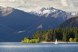 Sailing on Lake Wanaka, Wanaka, Otago, South Island, New Zealand, Pacific by Stuart Black