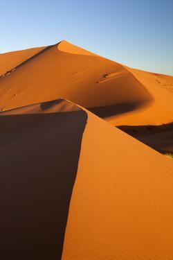 Sand Dunes of Erg Chebbi, Merzouga, Meknes-Tafilalet, Morocco, North Africa, Africa by Stuart Black