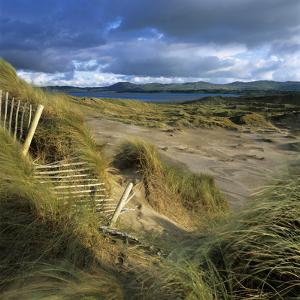 Sand Dunes, Strandhill, County Sligo, Connacht, Repubic of Ireland, Europe by Stuart Black