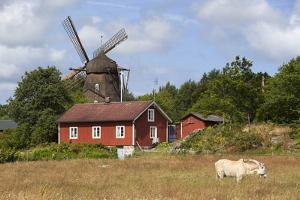 Sunvara Kvarn Windmill, Sunvara, Near Varobacka, Halland, Southwest Sweden, Sweden, Scandinavia by Stuart Black