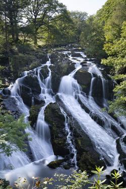 Swallow Falls, Betws-Y-Coed, Snowdonia National Park, Conwy, Wales, United Kingdom, Europe by Stuart Black