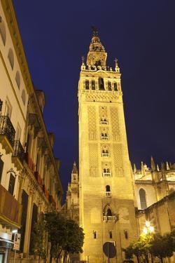 The Giralda at Night, UNESCO World Heritage Site, Seville, Andalucia, Spain, Europe by Stuart Black