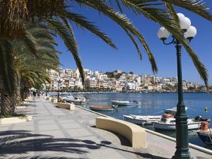 The Harbour, Sitia, Lasithi Region, Crete, Greek Islands, Greece, Europe by Stuart Black