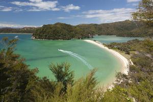 Torrent Bay, Abel Tasman National Park, Nelson Region, South Island, New Zealand, Pacific by Stuart Black