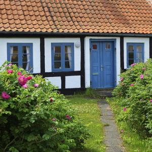 Traditional Half-Timbered House, Gammel Skagen, Jutland, Denmark, Scandinavia, Europe by Stuart Black