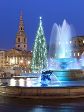 Trafalgar Square at Christmas, London, England, United Kingdom, Europe by Stuart Black
