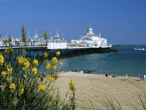 View over Beach and Pier, Eastbourne, East Sussex, England, United Kingdom, Europe by Stuart Black