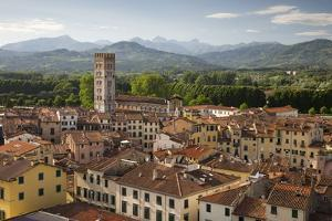 View over City to San Frediano from Atop Torre Guinigi, Lucca, Tuscany, Italy, Europe by Stuart Black